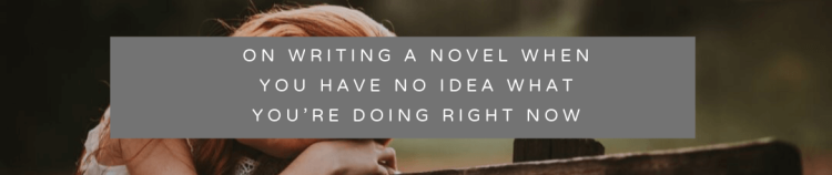 on writing a novel when you have no idea what you're doing right now(1)
